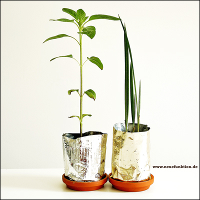 Coffee-bag recycling as plant pots - www.neuefunktion.de